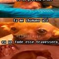 Doguinho tb ama