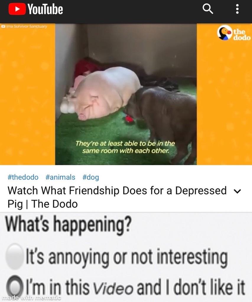 *sad oinking noises* - meme