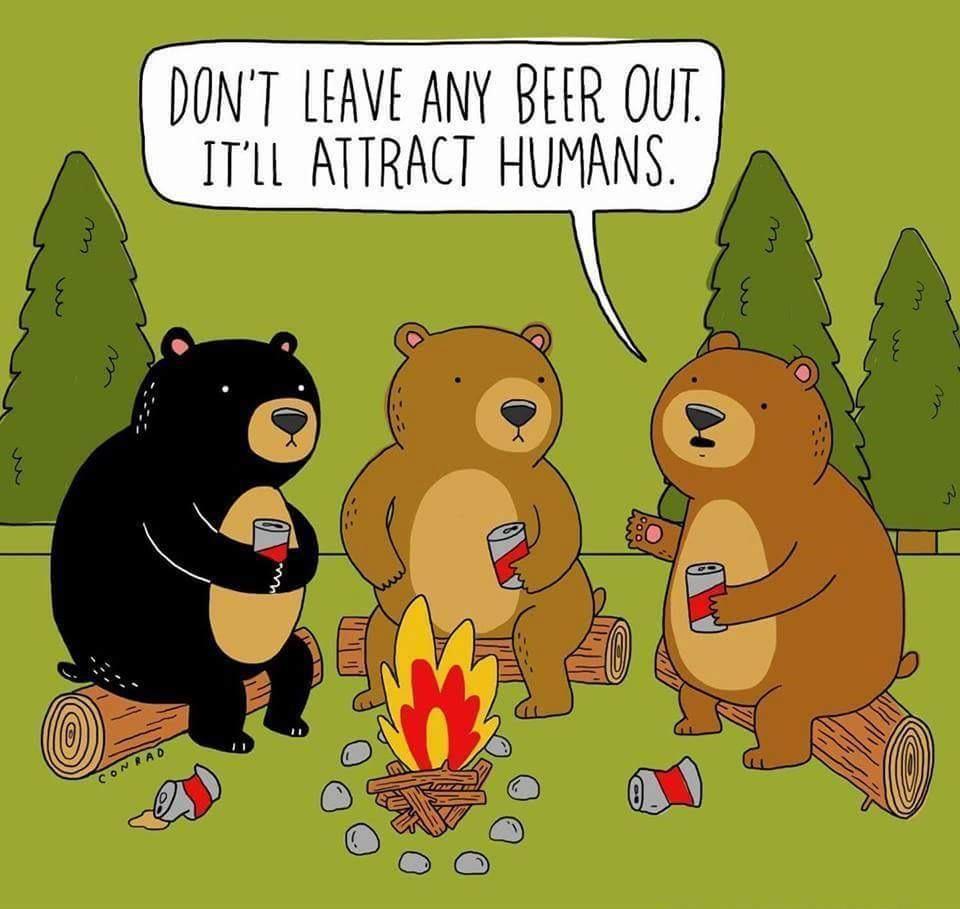 Bear cans - meme