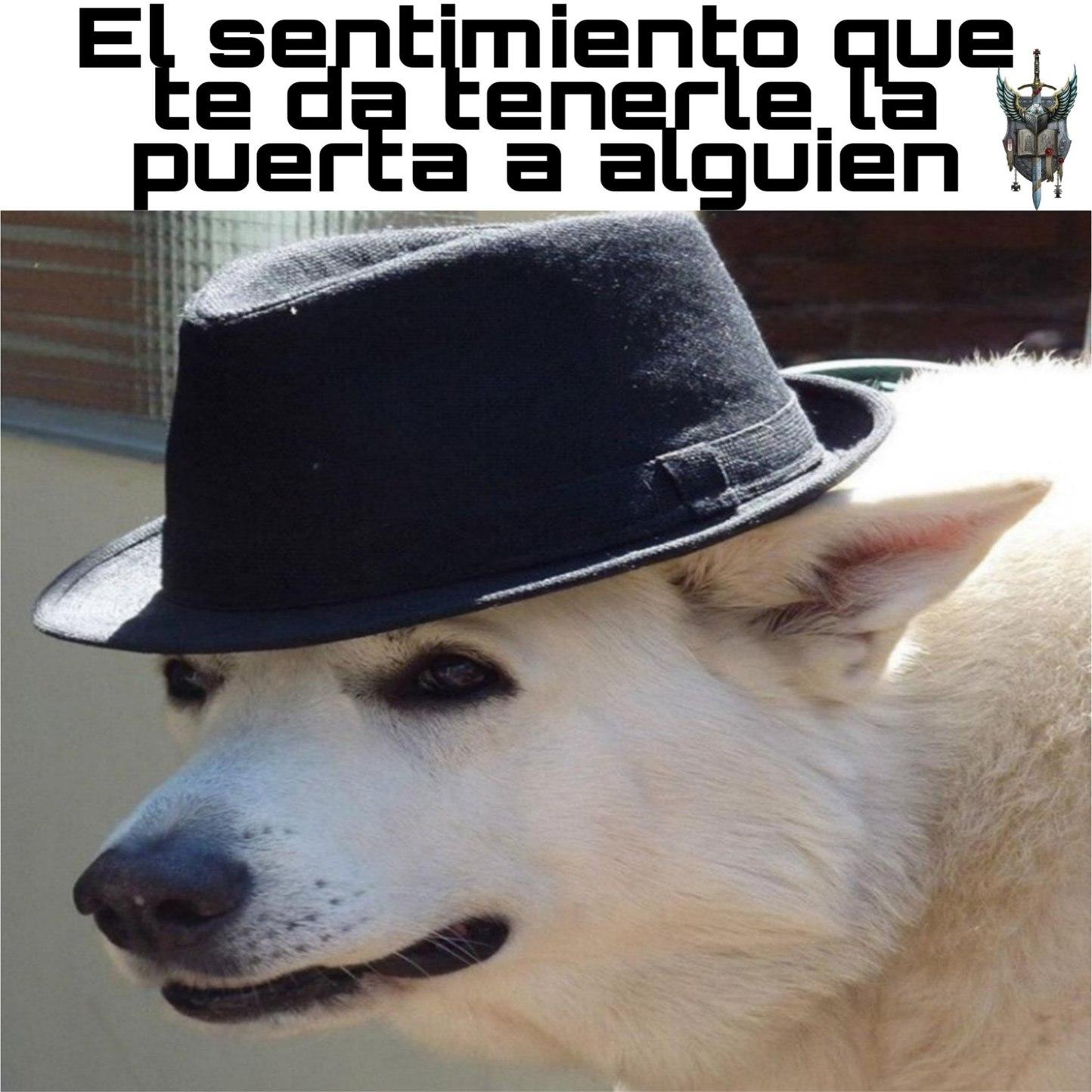 M'lady - meme