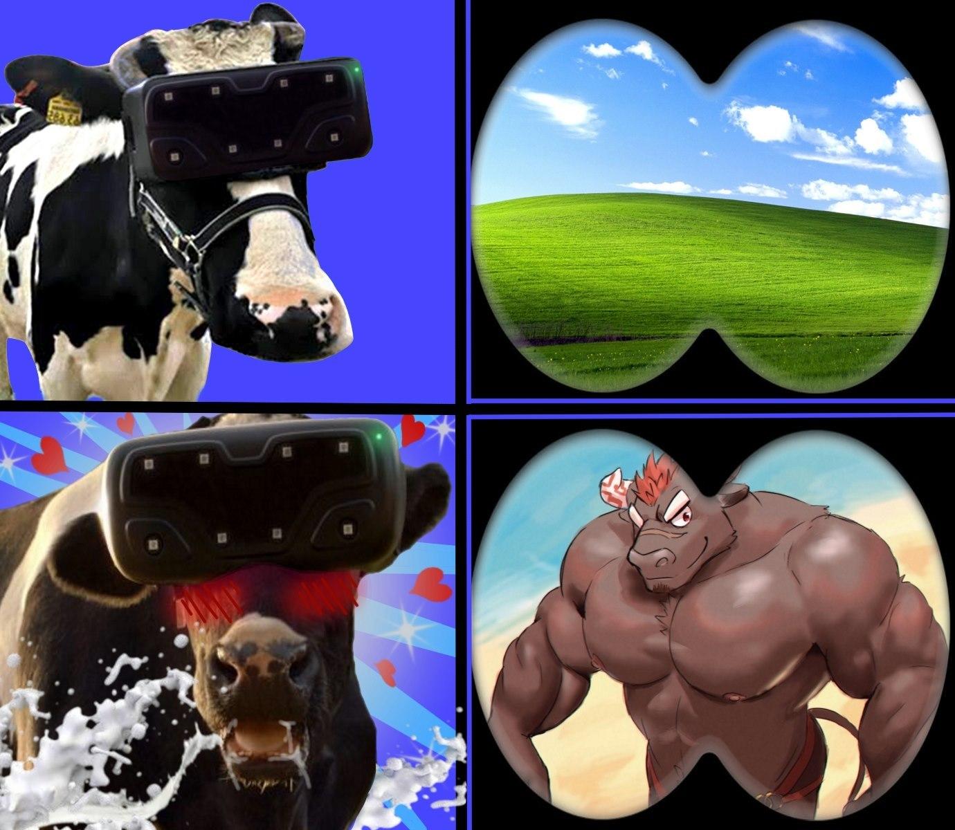 Cow VR - meme