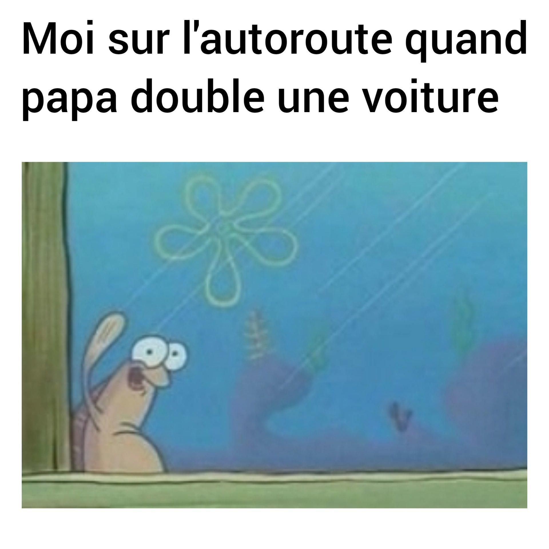 Coucouuu - meme