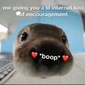 Kiss boop