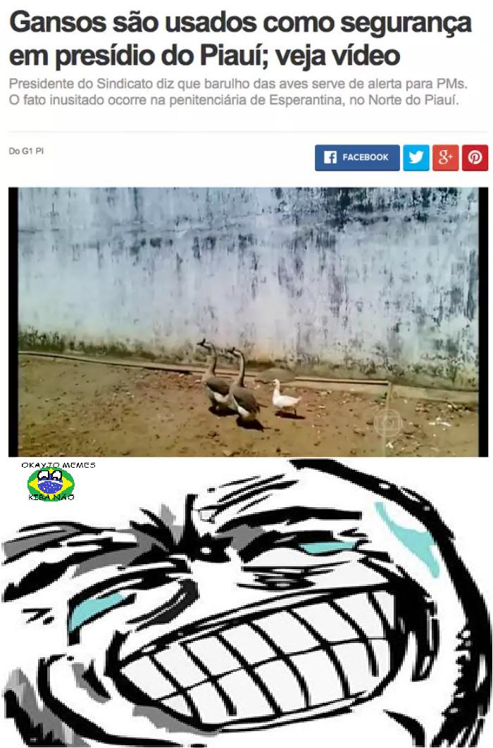 Gansos... - meme