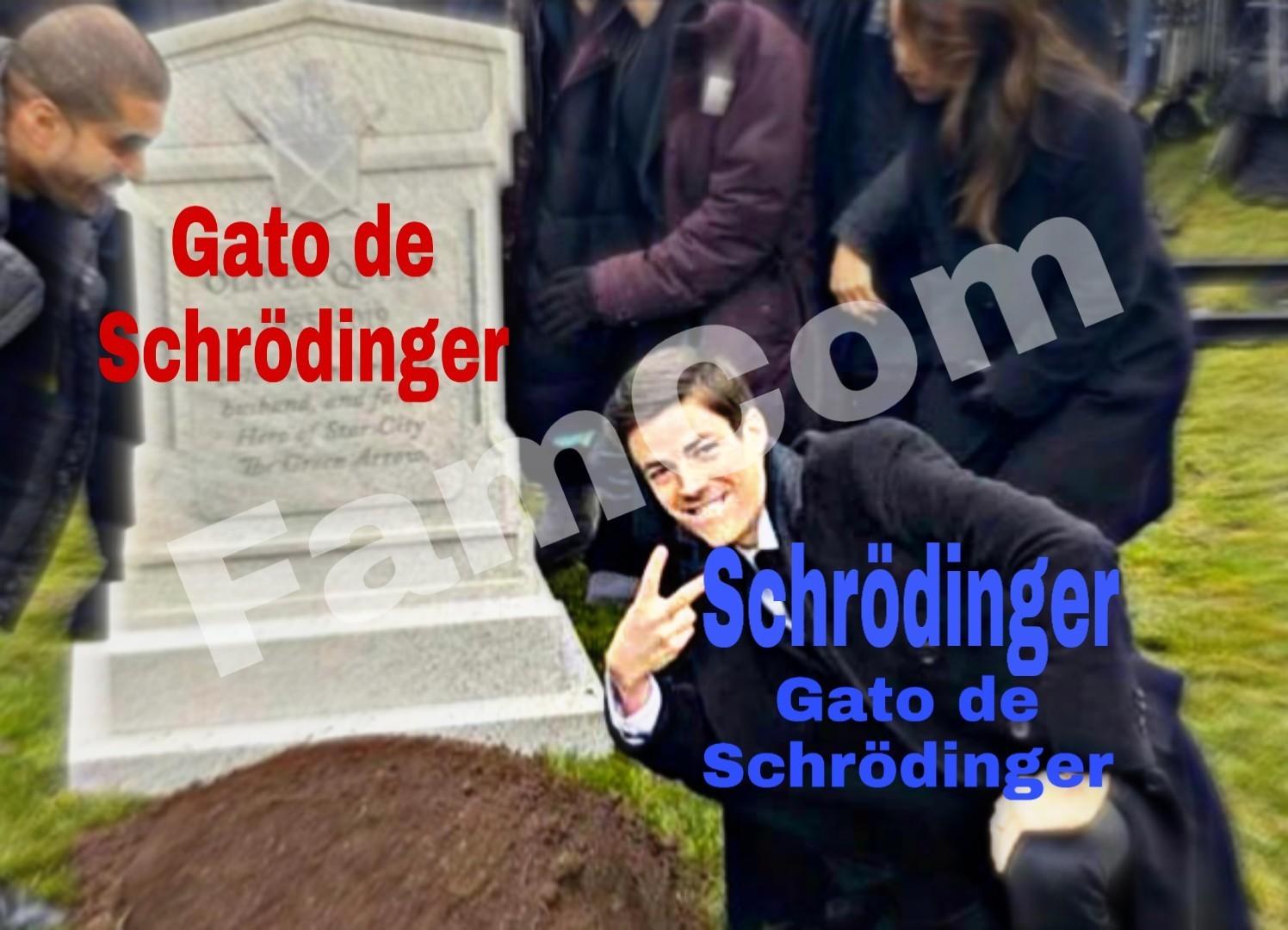Mewdinger - meme