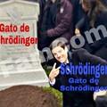 Mewdinger
