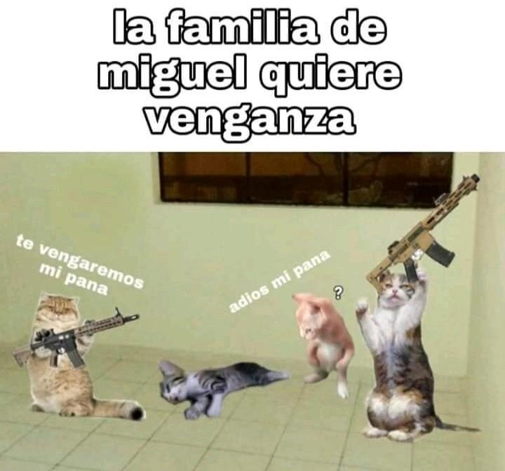 Todo sea por  Miguel - meme