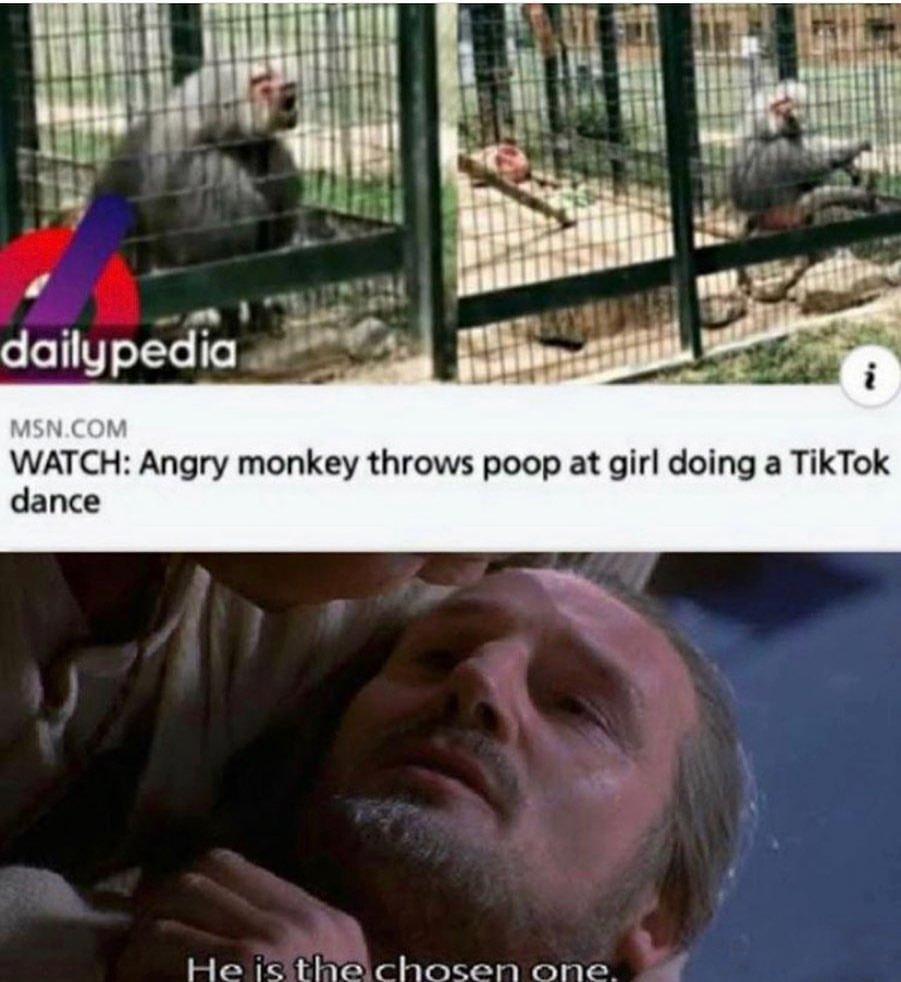 Monkey! - meme