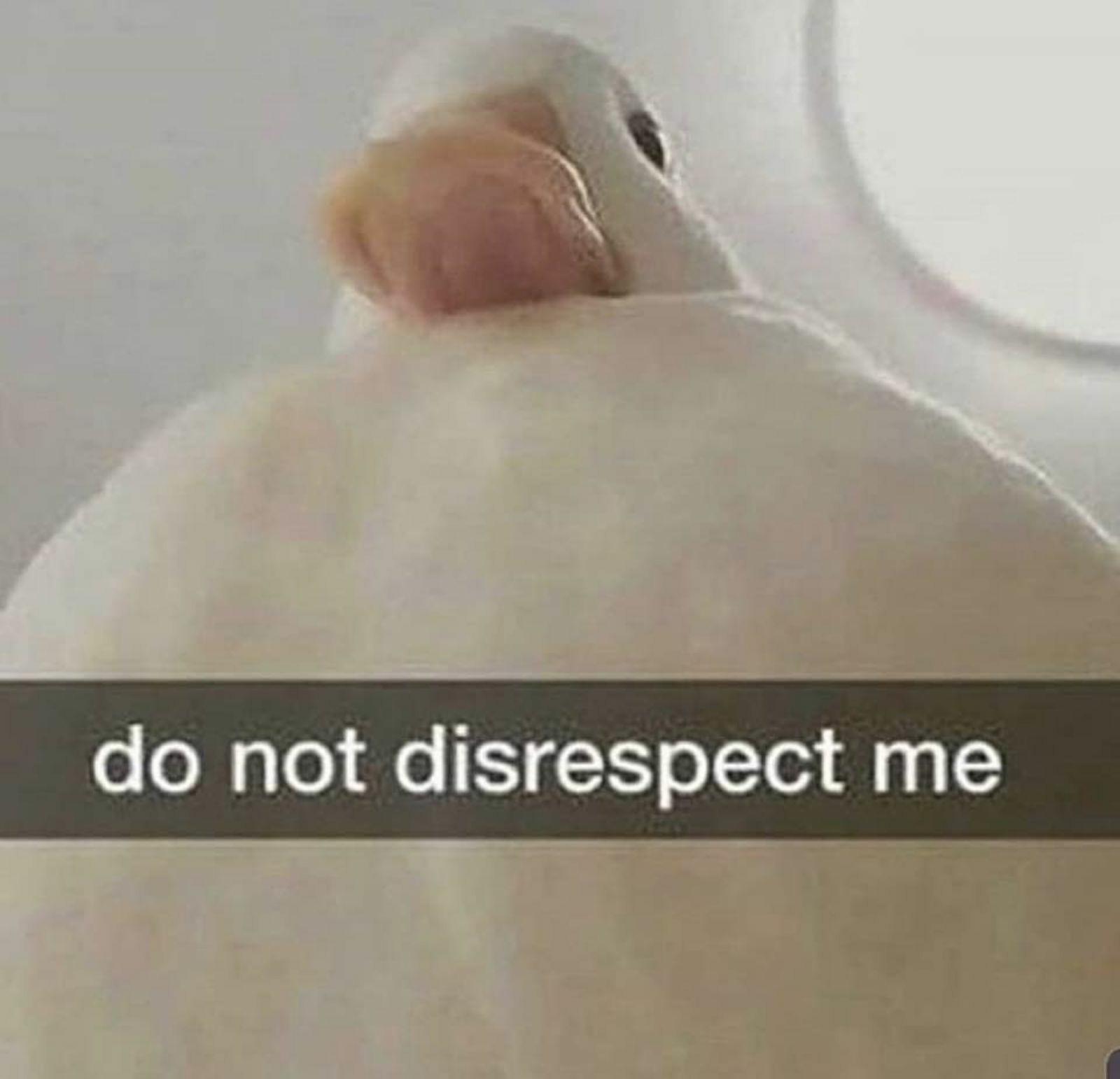 Don't disrespect him you monster >:0 - meme