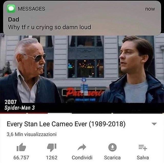 Every Stan Lee Cameo Ever - meme