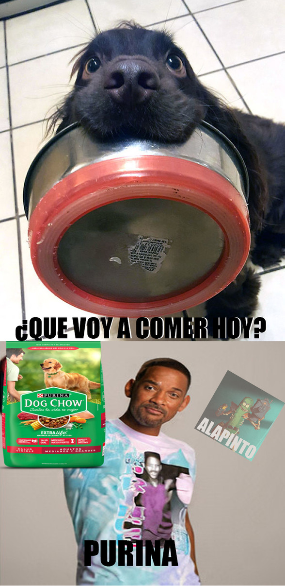 PURINA SMITH - meme