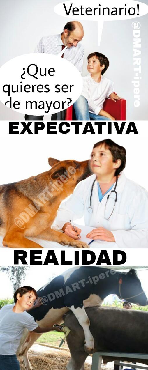 Expectativa VS Realidad - meme
