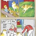 dumb ass dog