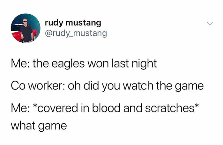 The eagles win against fourth comment - meme
