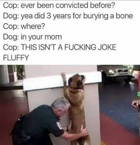 101 - meme