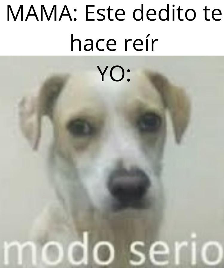 MODO SERIO DICE - meme