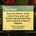Bee alert everyone