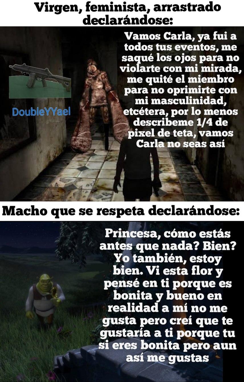 Re capo el Shrek - meme