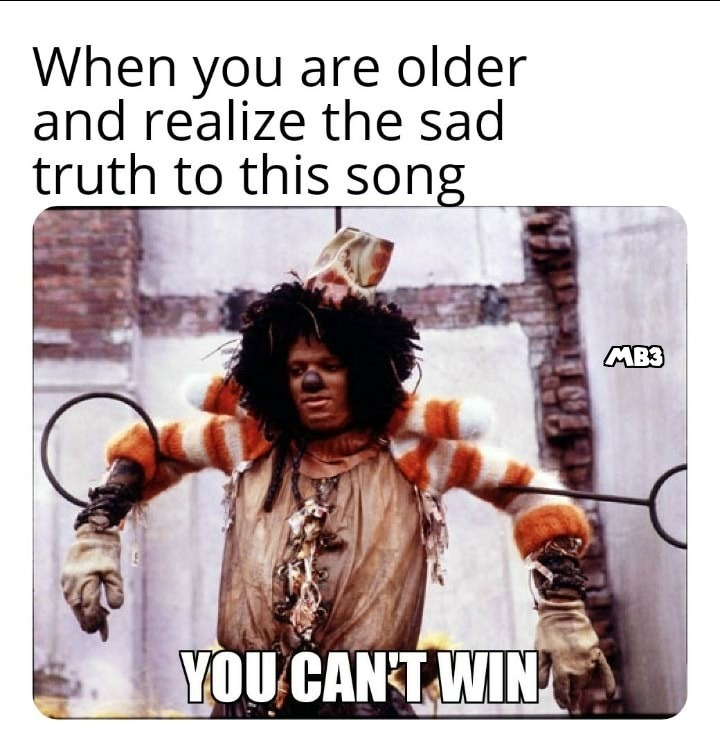 You Can't Win - meme