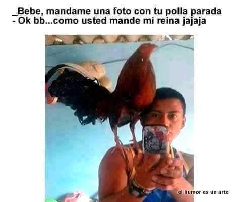 La polla - meme