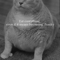 Be chonky