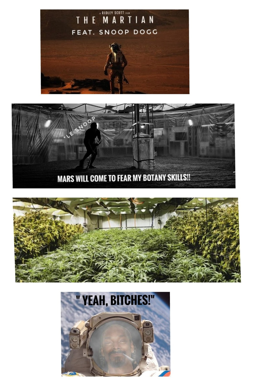 Snoop dee-o-double-gee nibbas!! - meme