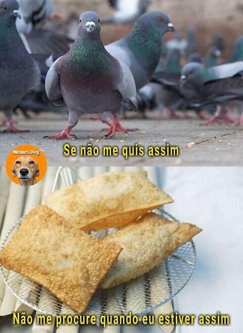Totoso - meme