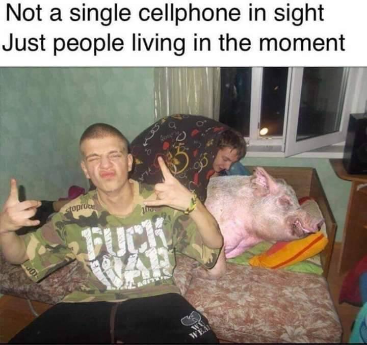 Keep the pork warm - meme