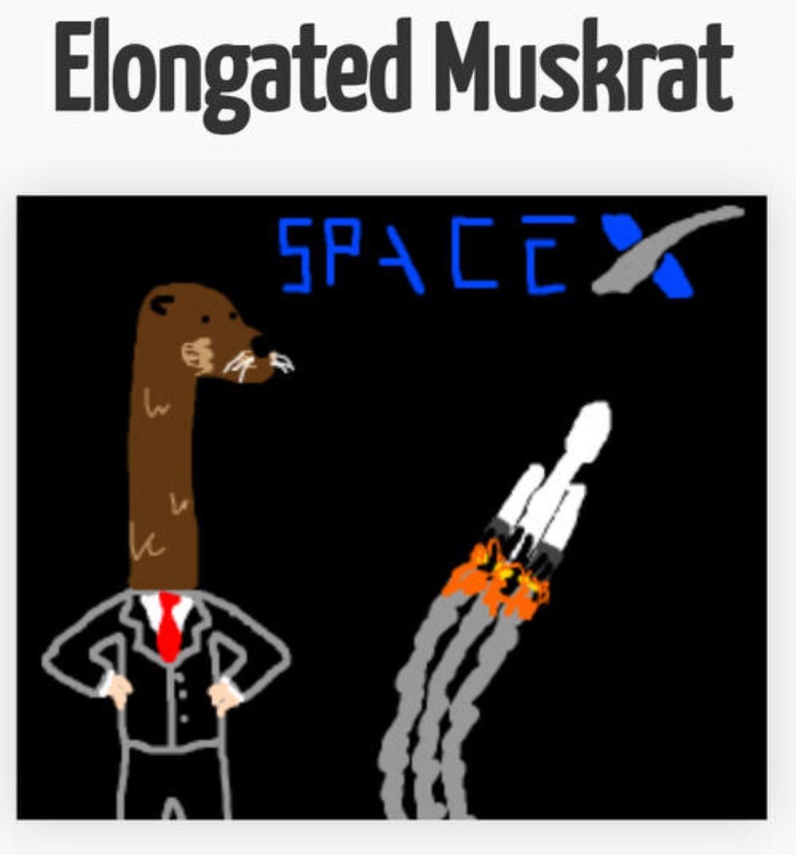 better than Elon Musk - meme