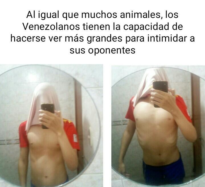 Venezolanos blancos - meme