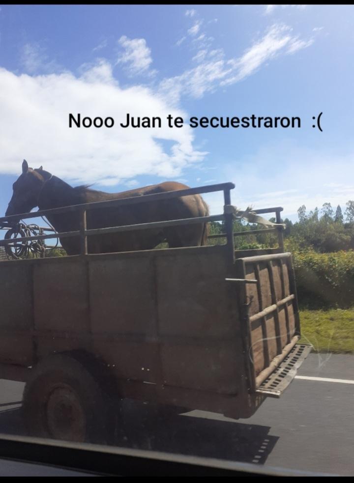 Noooo Juan ;( - meme