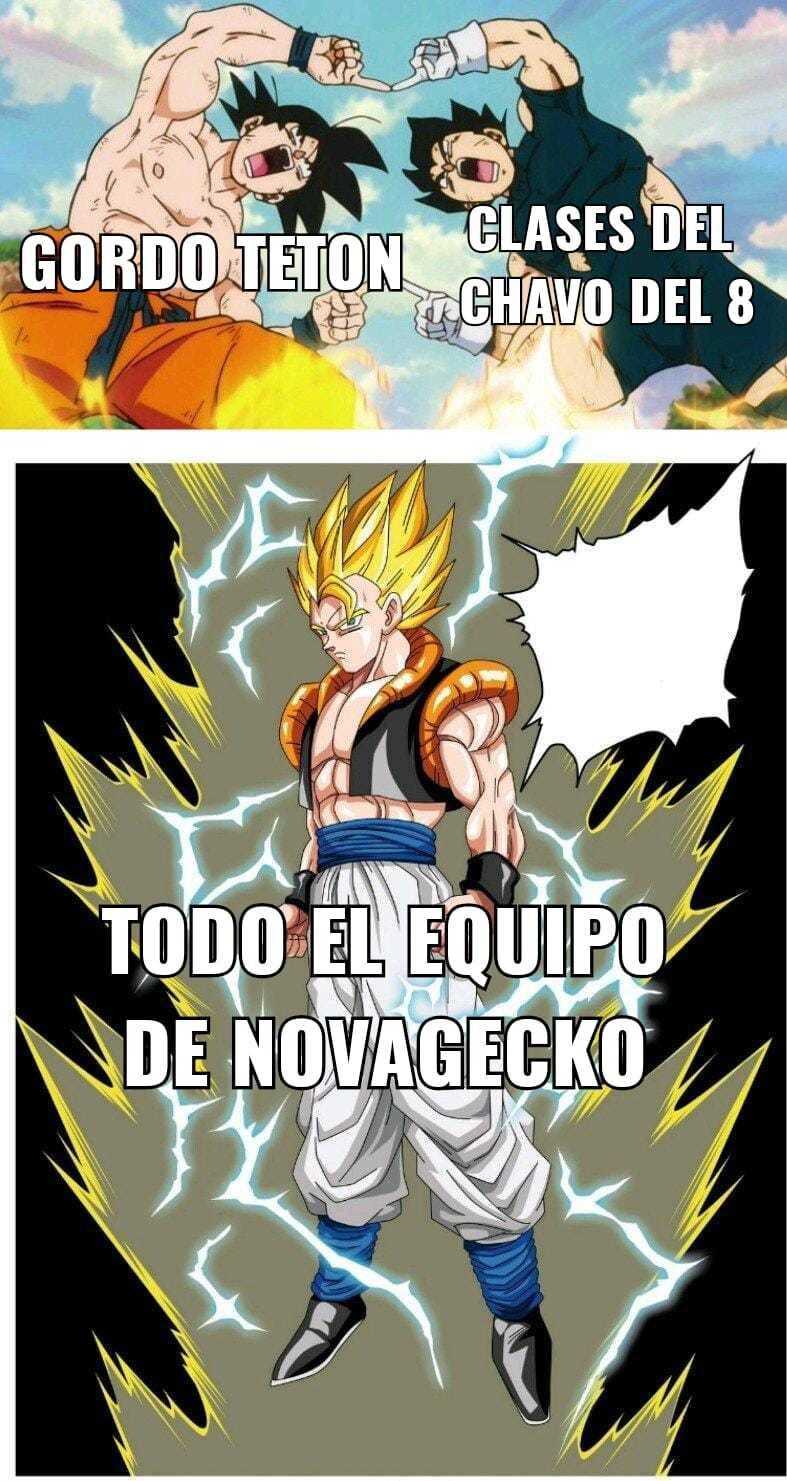 Novagecko be like - meme