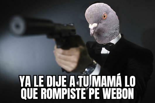 El pájaro espía peruano - meme