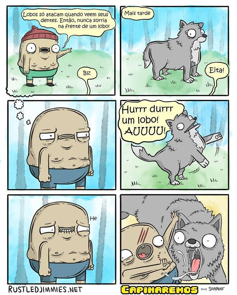 lobo!!! - meme
