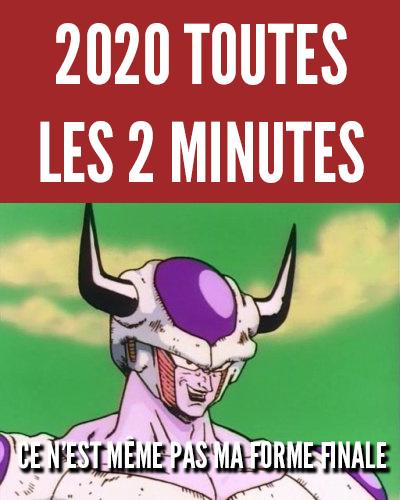 La véritable forme de 2020 - meme