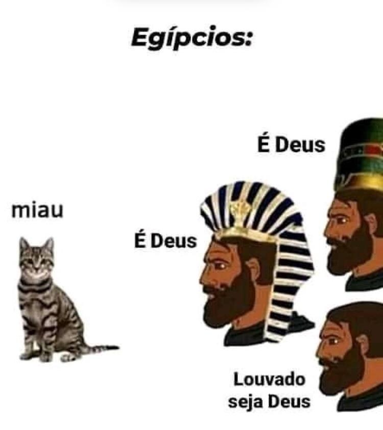 Miau Miau gatinhas  - meme