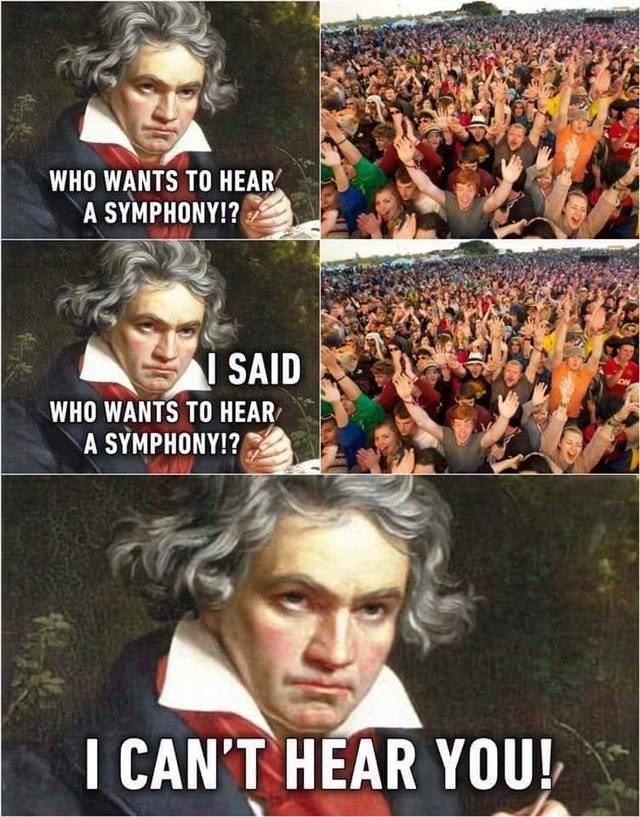 Beethoven was deaf - meme