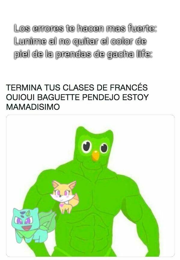Y no pregunten porque lunime es un pajaro verde multilingüe - meme