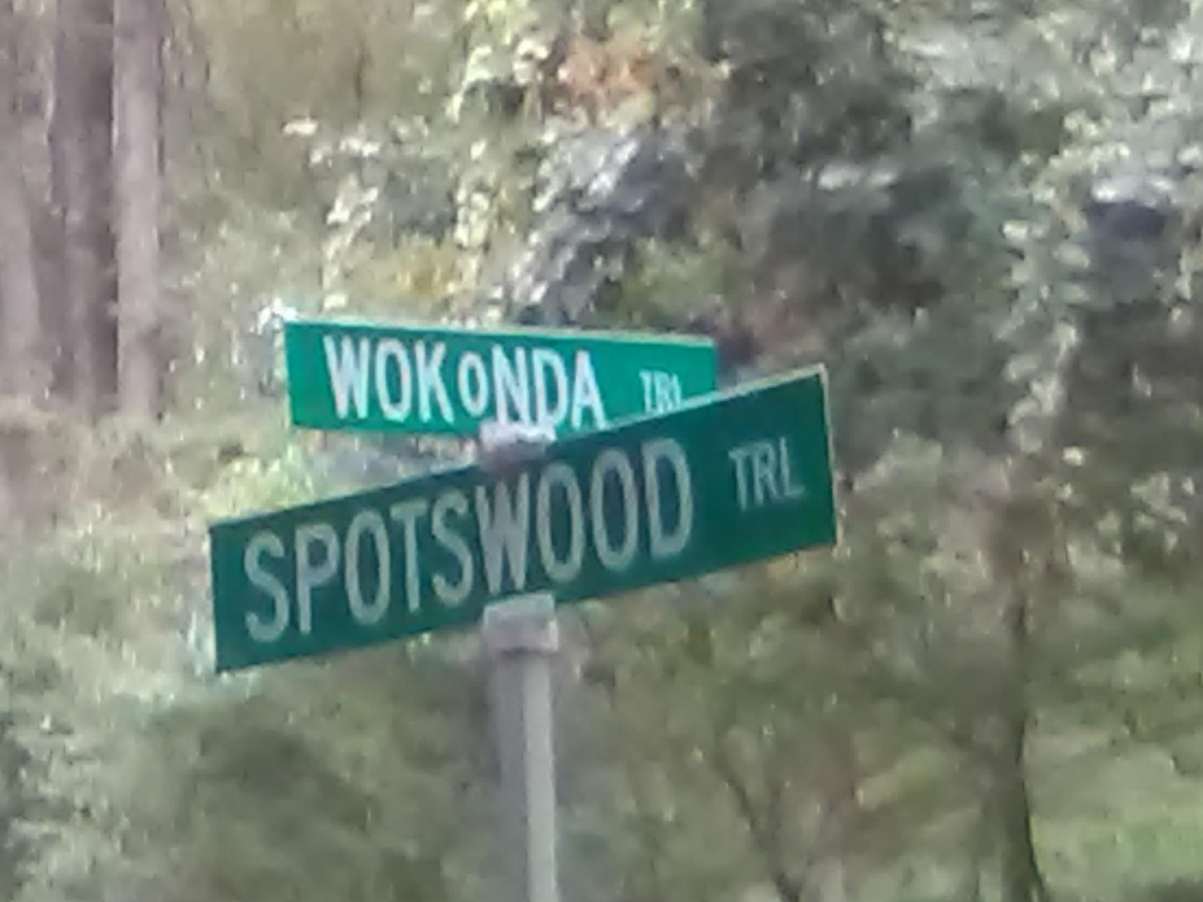 WOKoNDA - meme