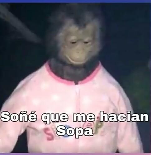 Los monos también tienen sueños - meme