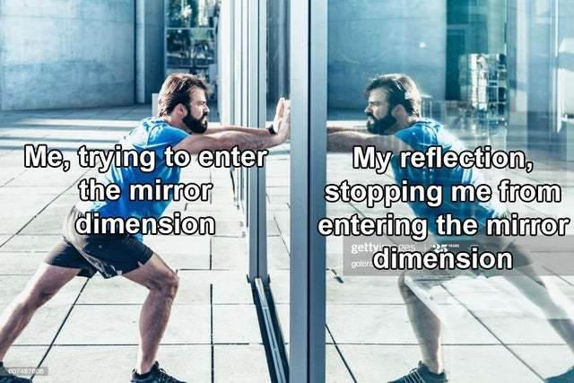 The mirror dimension - meme