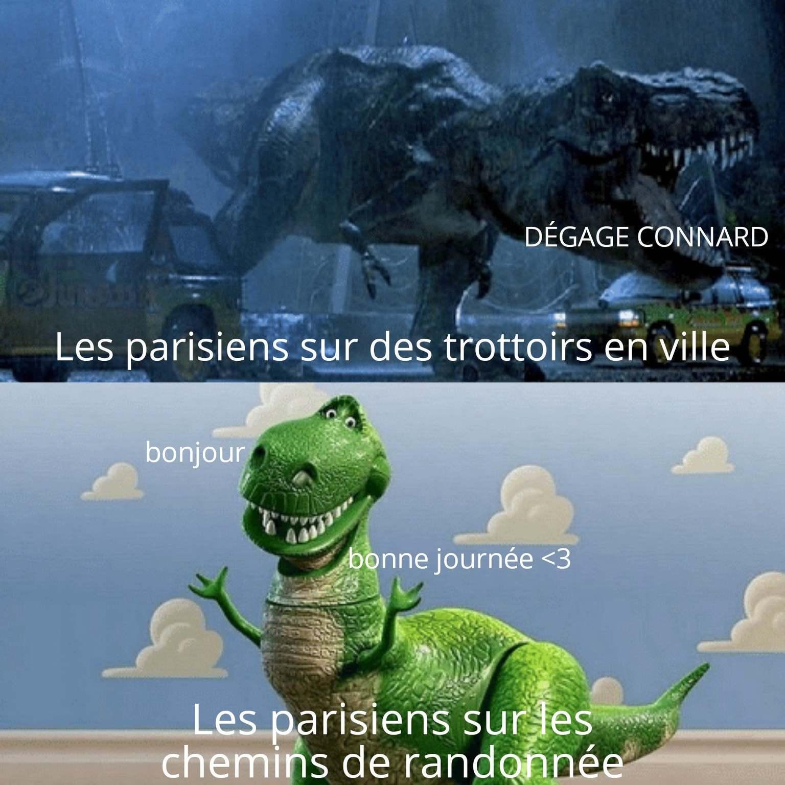 Schizo - meme