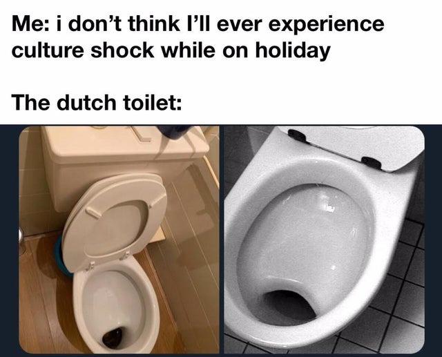 Dutch toilet - meme