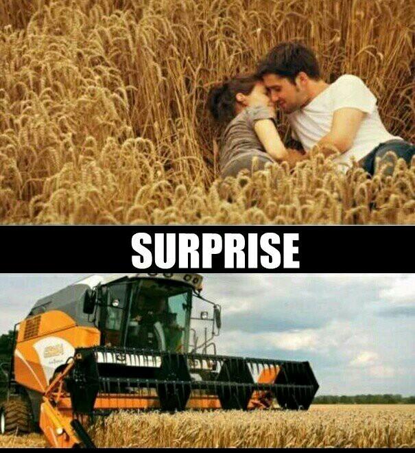 Surprise lovers. - meme