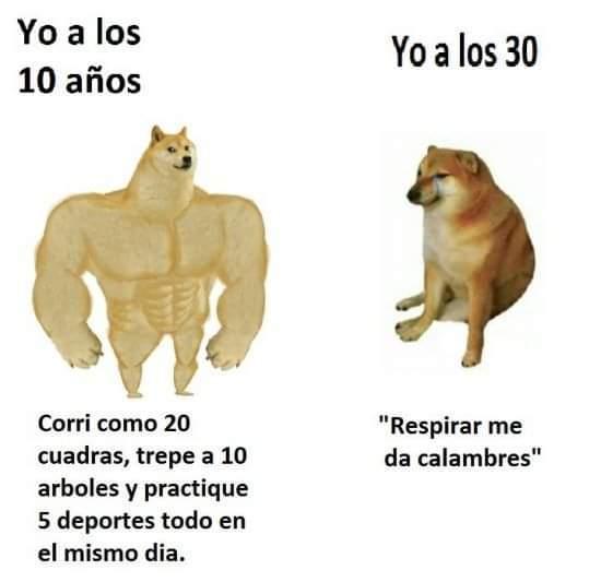 toy chikito - meme