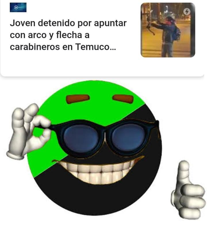 La bandera es del anarcoprimitivismo - meme