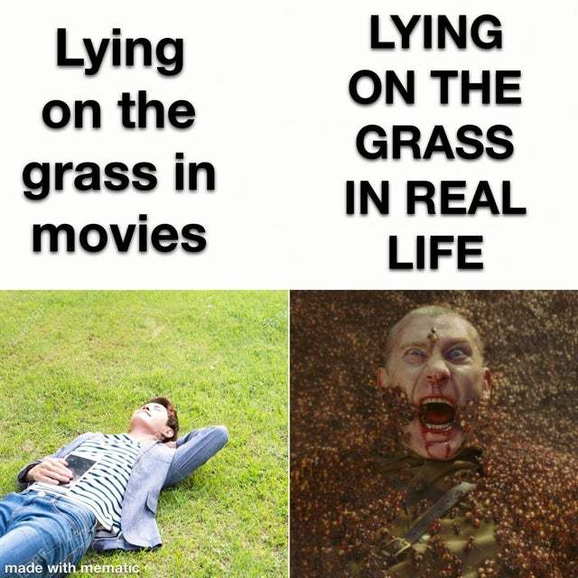 Lying on the grass - meme