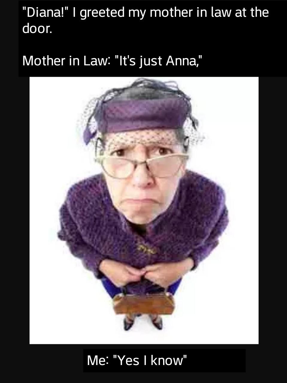 Mother in Law - meme