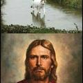 gato jesus