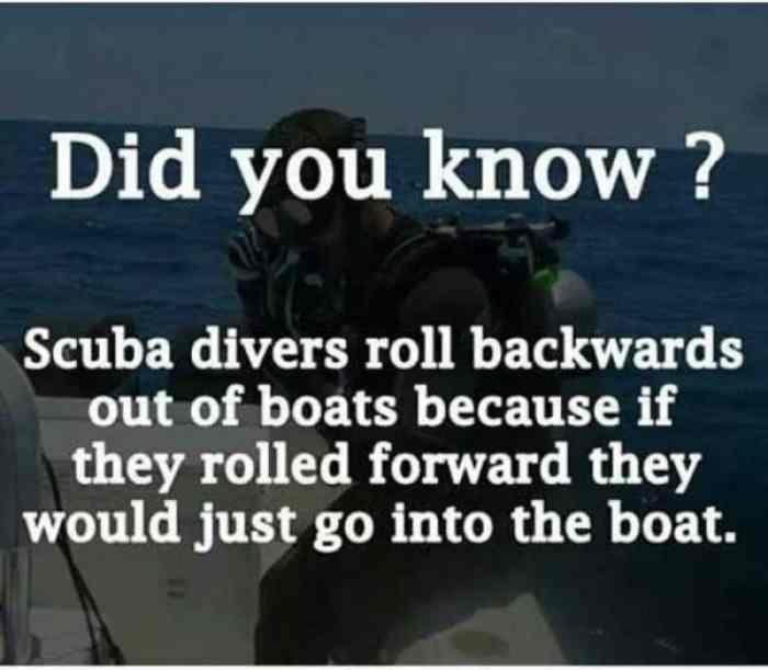 facts!!! - meme